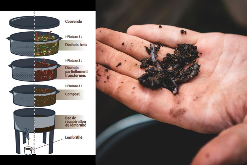 Cuisine zéro déchet : à gauche un schéma expliquant le processus et le fonctionnement du lombricomposteur et à droite une photo d'une main ouverte avec des vers.